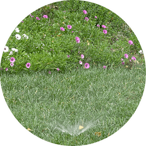 Most existing homes already have an irrigation system in their landscape. Whether sprinklers, rotors, micro spray, or drip, it's not underground drip approved for untreated greywater.